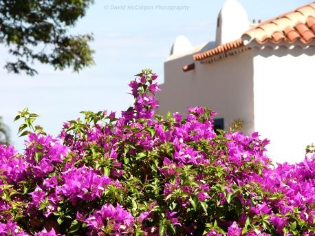 Hotel Jardin Tecina, La Gomera