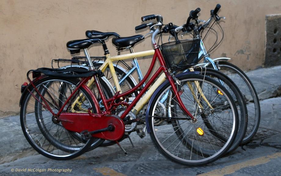 Bikes parked in Firenze