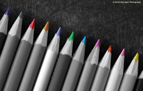 Pencils in black and white with colour accents
