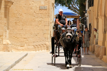 Horse-drawn Carriage, Mdina