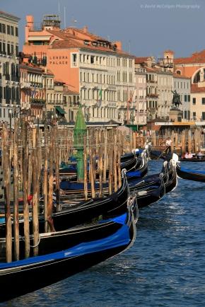 Gondolas on the Venice Waterfront