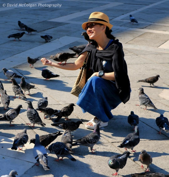 Tourist with Pigeons
