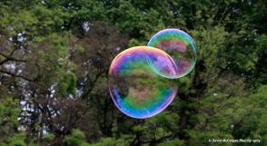 Bubbles in Park