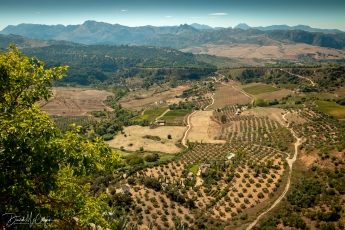 Andalusian landscape from Hotel Reina Victoria, Ronda